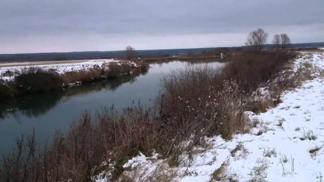 Превышение нормы содержания азота нитритного выявлено в месте замора рыбы на реке Пьяна Пильнинского района Нижегородской области