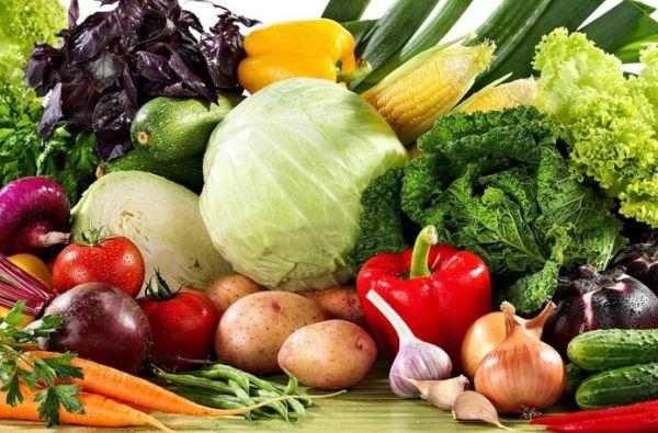 Неменее 350 тыс. тонн овощей произведут нижегородские товаропроизводители кконцу 2016г