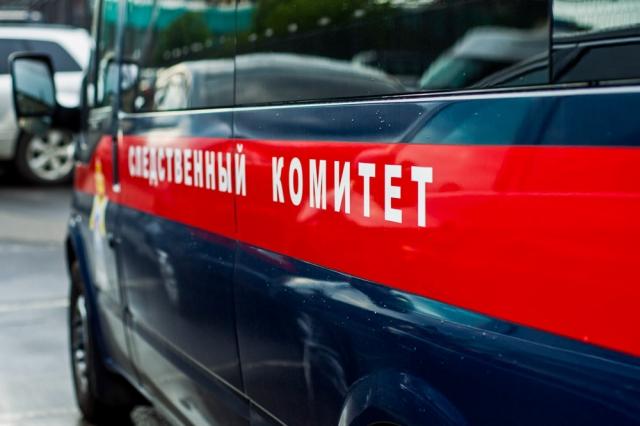 Гражданин Дзержинска убил родного сына перочинным ножом