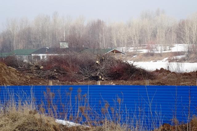 Строительство яхт-клуба наГребном канале непонравилось Росприроднадзору