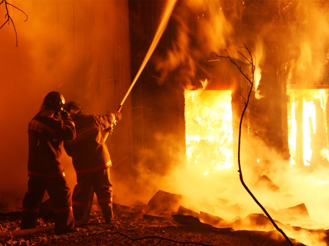 Мать ссыном погибли впожаре вдоме вгороде Бор