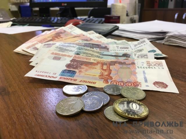 Проект бюджета Нижнего Новгорода прошел публичные слушания