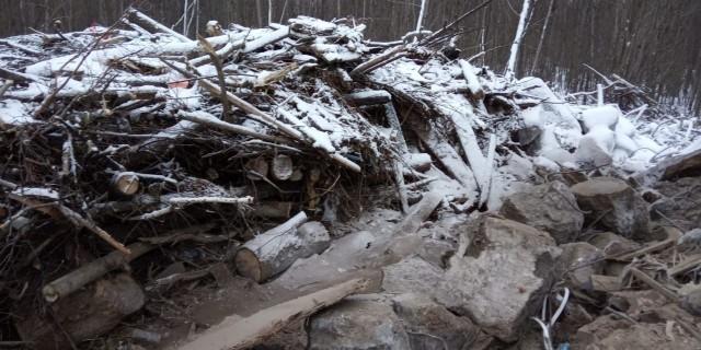 Несанкционированную свалку обнаружили в Балахнинском районе Нижегородской области