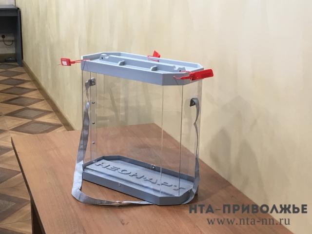 Завуча нижегородской школы будут судить зафальсификацию итогов выборов