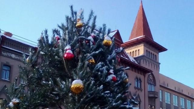 Напроспекте Кирова вСаратове установят 2 новогодние елки