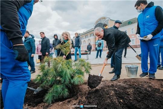 Второй этап озеленения Красной площади начали в Чебоксарах