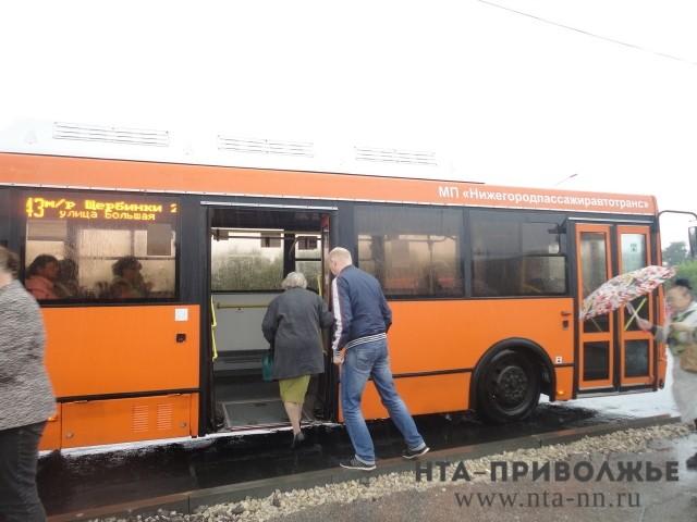 Нелегальные перевозчики вНижнем Новгороде оштрафованы нашесть млн руб.