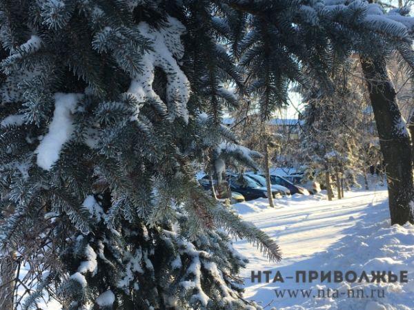 МЧС сообщило обаномальных холодах вНижегородской области
