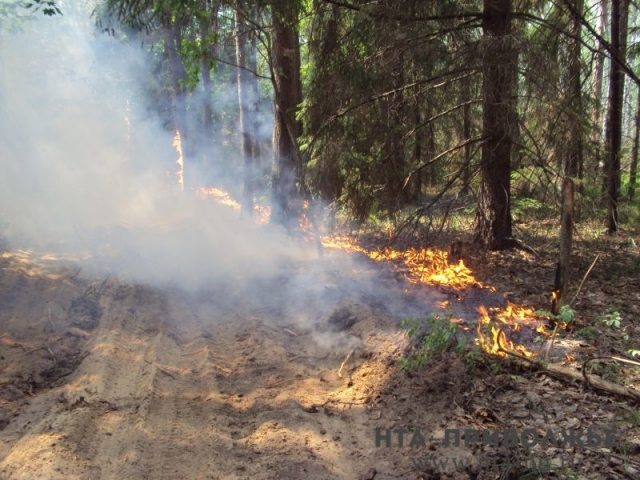 Пожароопасный сезон наюге Нижегородской области может начаться 17апреля