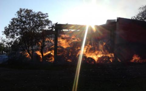 Немалый ангар ссеном спалили неизвестные вАрдатовском районе