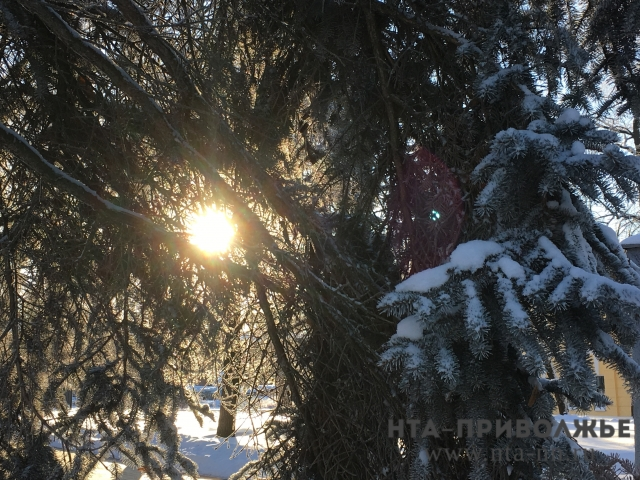 Февраль принесет в столицуРФ небольшие морозы иснег