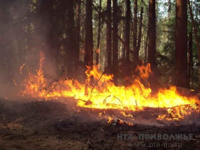 Сильная жара до32 градусов ожидается вНижегородской области 26