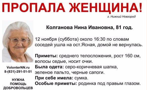 Пропавшая вНижнем Новгороде пенсионерка Нина Колганова найдена погибшей